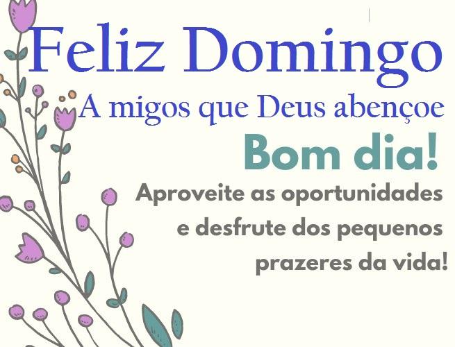 Bom dia feliz domingo maravilhoso e abençoado para você e a sua família